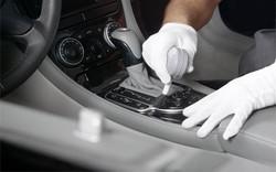 car clean brush