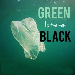 BLACK FRIDAY vs GREEN FRIDAY?
