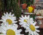Blumen Gardens Online Store Garden Art