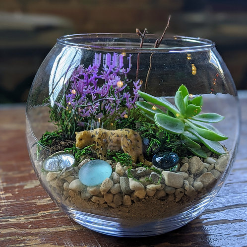 Build your own Small Terrarium Kit