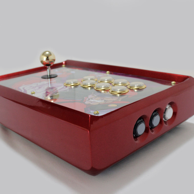 Bison Fightstick 09.JPG