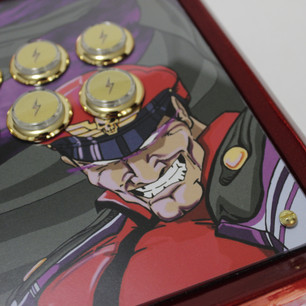 Bison Fightstick 07.JPG