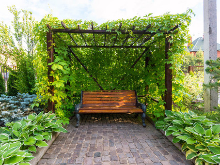 Use Trellis To Turn Your Garden Into A Whimsical Fairytale