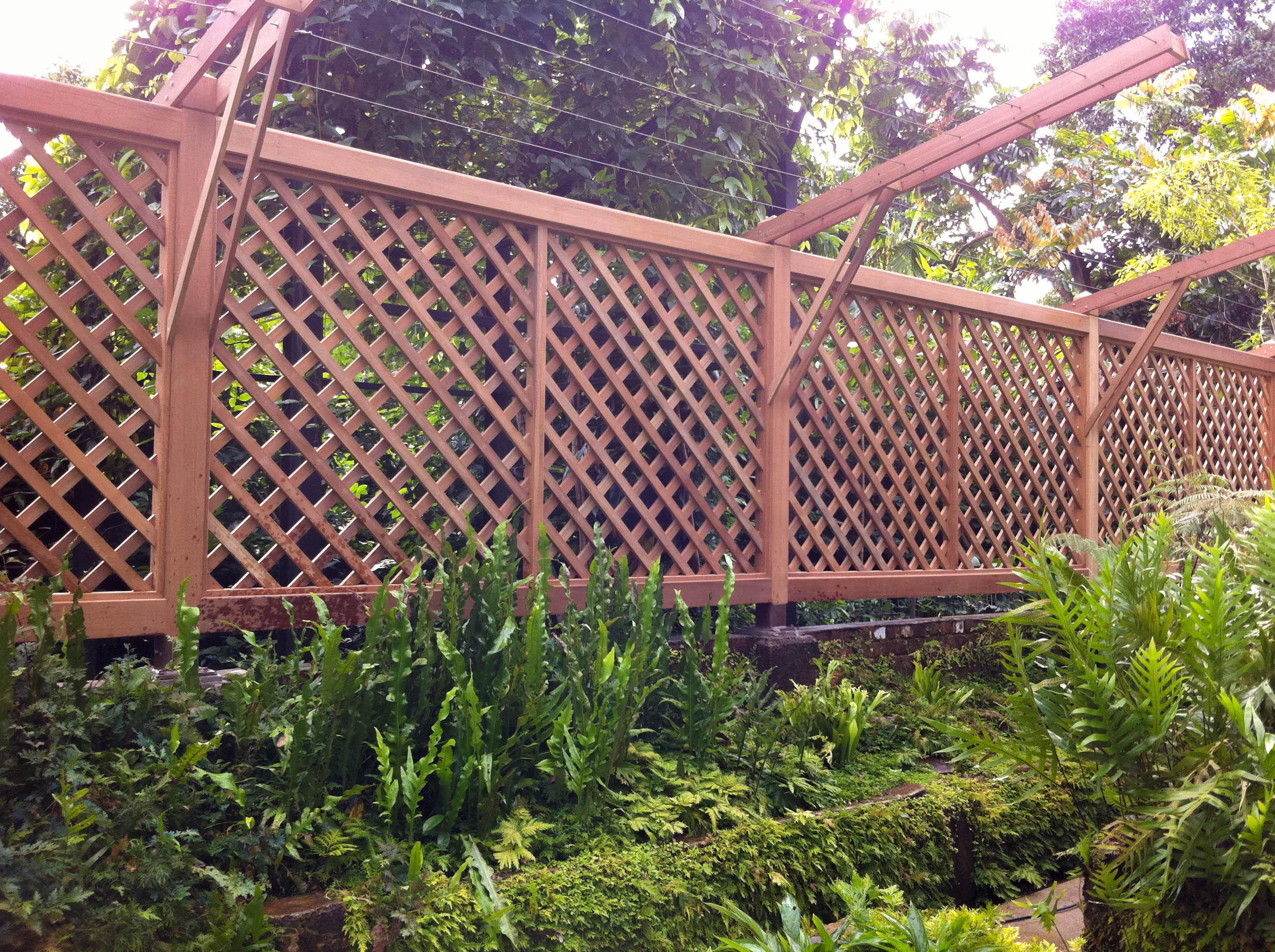 Botanic Garden 011