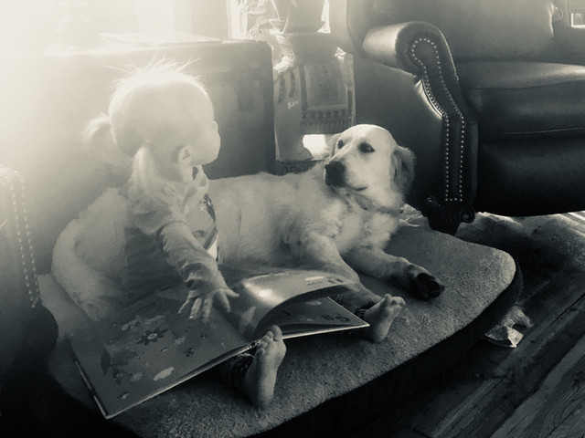Dogs & literacy
