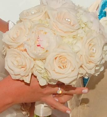 Blush roses1