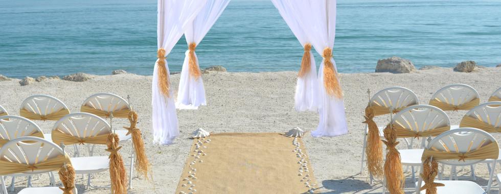 Sugar Starfish Spray Canopy