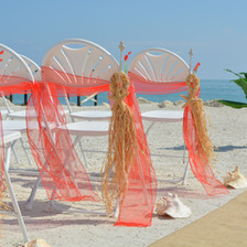 Sugar Starfish Raffia Hangers