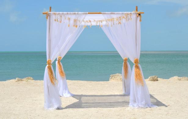 Sugar Starfish Curtain