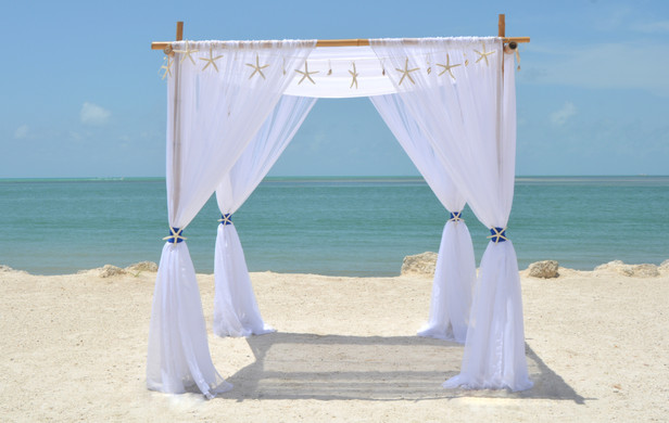 White Starfish Curtain Canopy