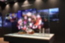 LG-Transparent-OLED-Signage-02.jpg