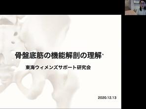 【開催レポ】骨盤底筋の機能解剖を理解する