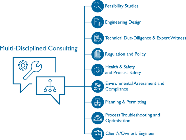 Multi-Disciplined Consulting Infographic