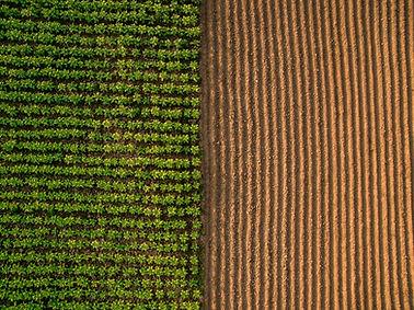 shutterstock - Aerial Farm.jpg