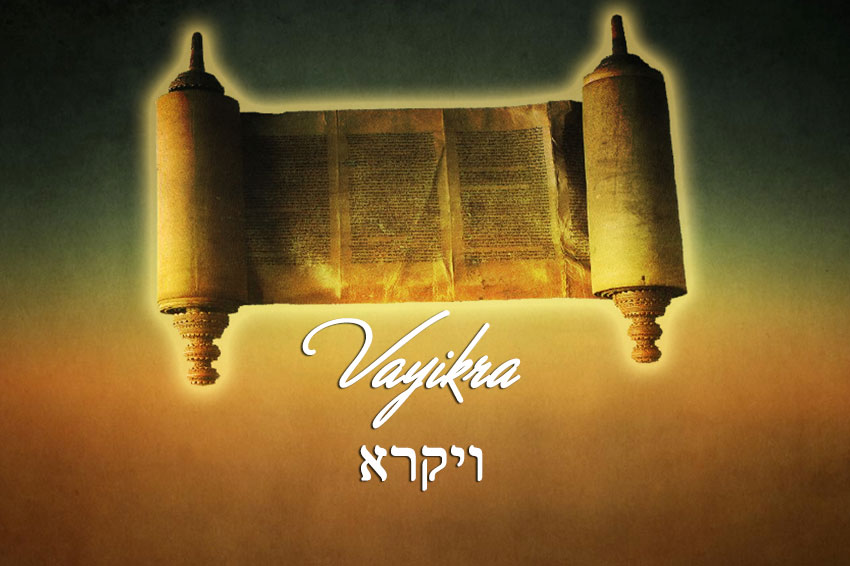 vayikra-reading
