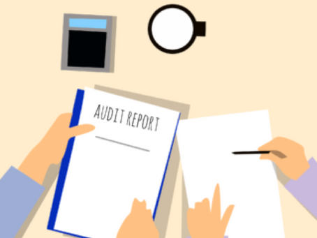 2)Auditing Processes