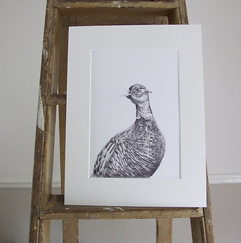 Wilfred - Mounted print - Med, Collectors Print