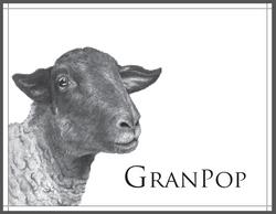 Puddle & Granpop