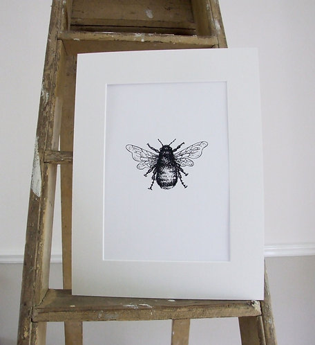 Mr Bumble - Mounted print - Med, Collectors Print