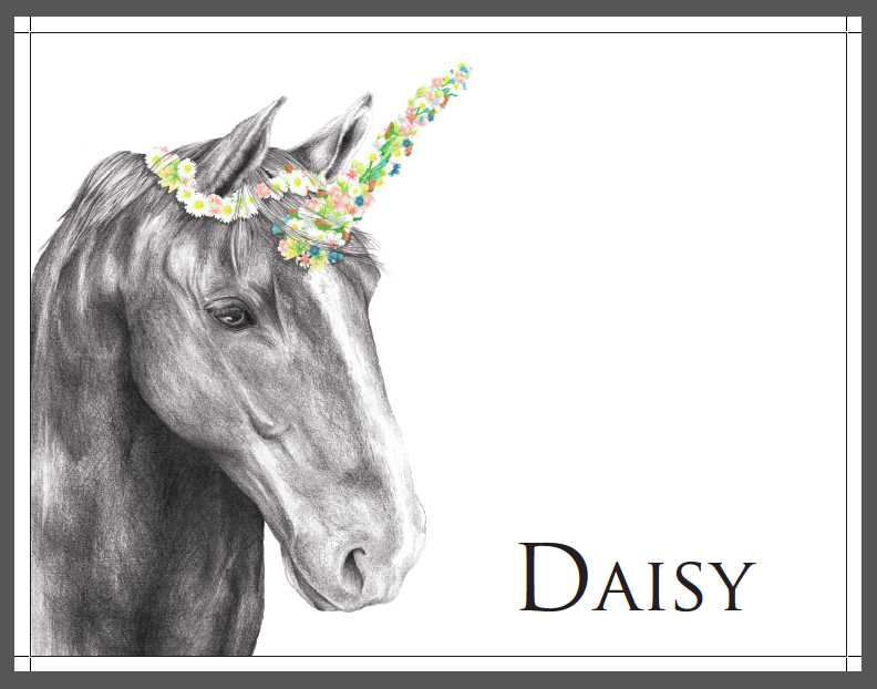 Unicorn & Daisy