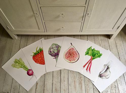 Botanical print - Lrg. Set of 6
