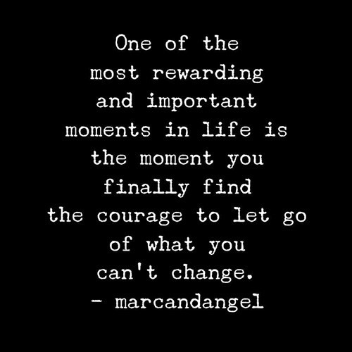Quote about letting go of the things in life that you cannot change.