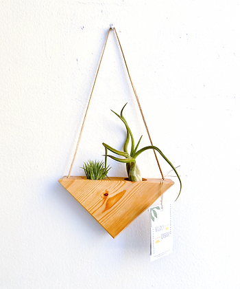 Wooden Triangle Air Plant Hanger