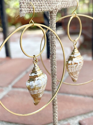 Brass Coated Conch Shell Hoops