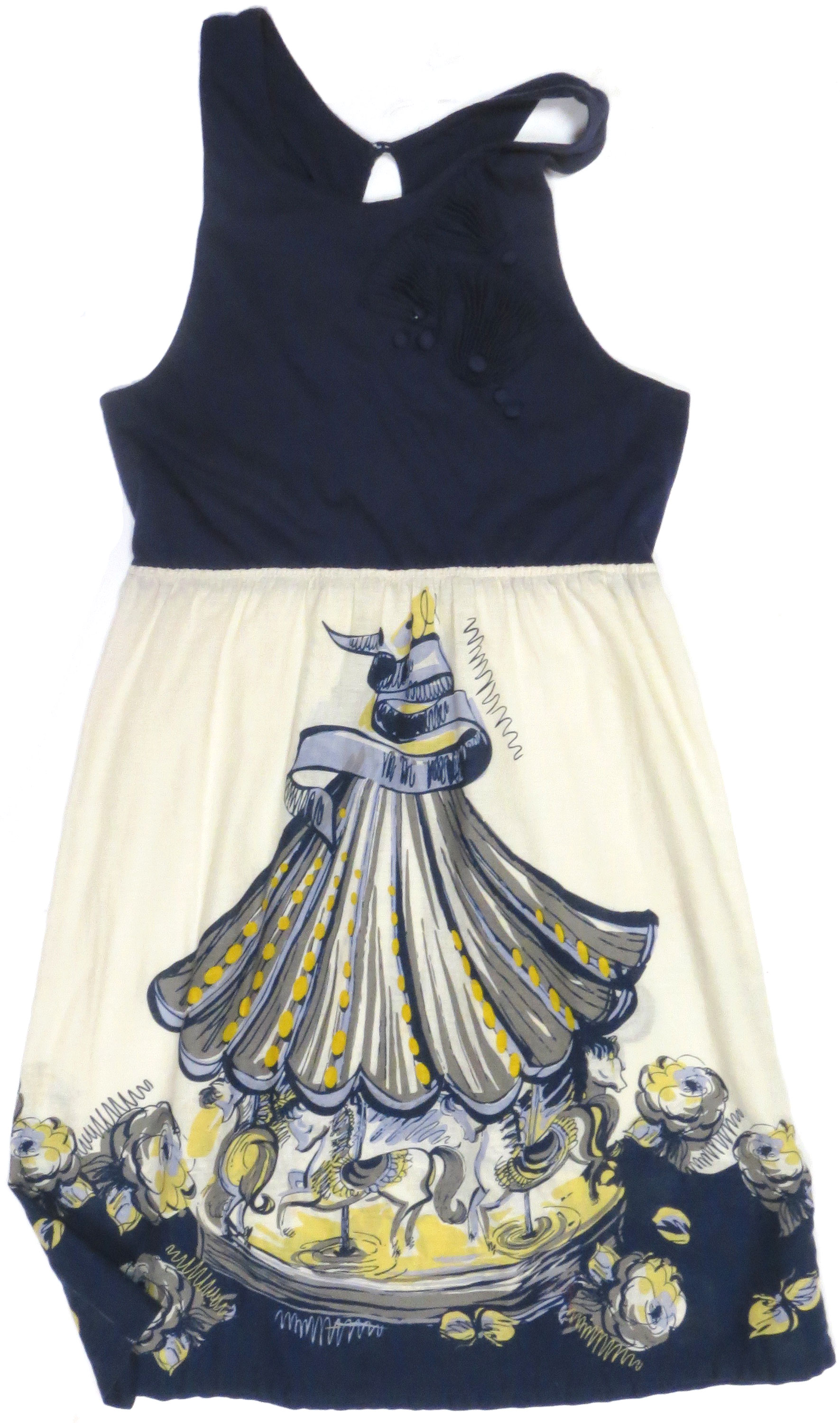 Carousel Tank Dress
