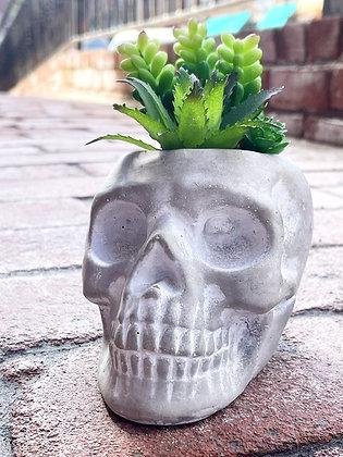Concrete Skull Fake Succulent Planter