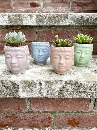 Buddha Head Concrete Planter