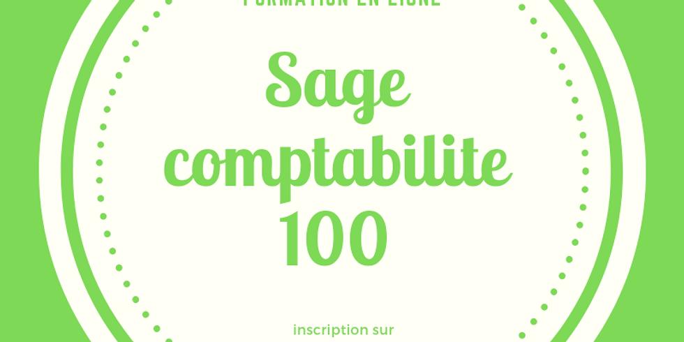 LA PRATIQUE DE LA COMPTABILITE EN ENTREPRISE AVEC SAGE COMPATILITE 100
