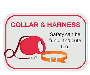 Icon-10-Collar-&-Harness.png