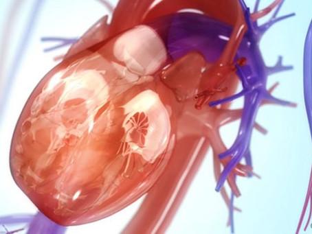 Réduire les risques de maladies cardiovasculaires : une p'tite dose de sport suffit.