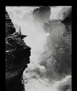 Donald Pennington, Photography