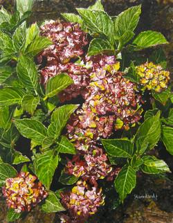 Sherri Woodard, Painting