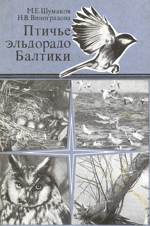 Шумаков М.Е. Виноградова Н.В. Птичье эльдорадо Балтики