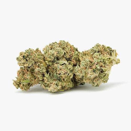 Girl Scout Cookies - Hybrid