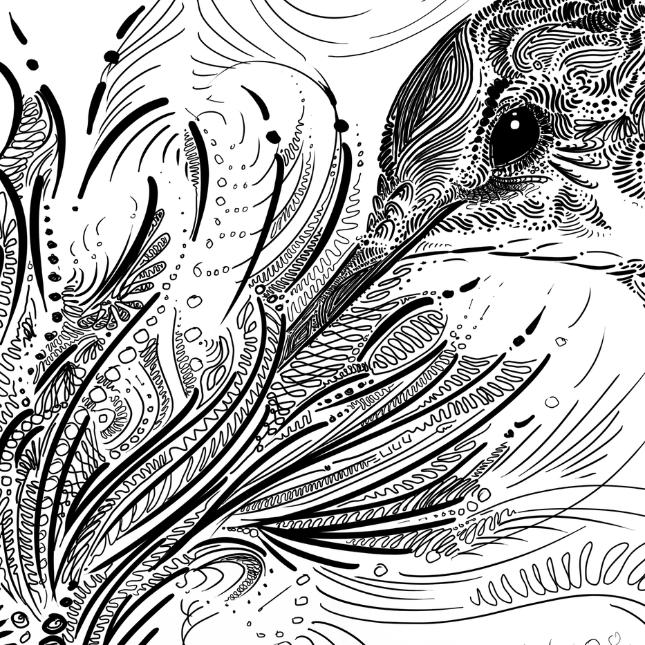 Hummingbird BLACK on White Detail