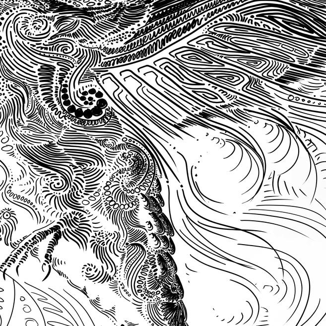 Hummingbird BLACK on White Detail