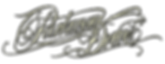 parkway drive.png