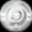 silver-shiny-hr-rf-904x904.png