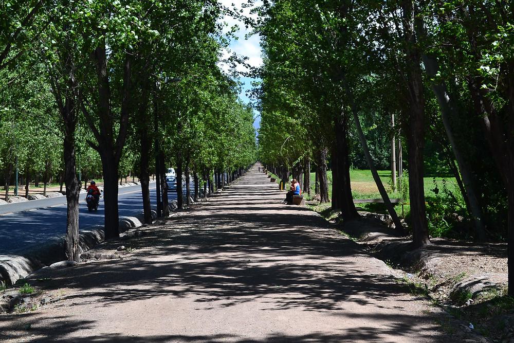 Parque de Mendoza