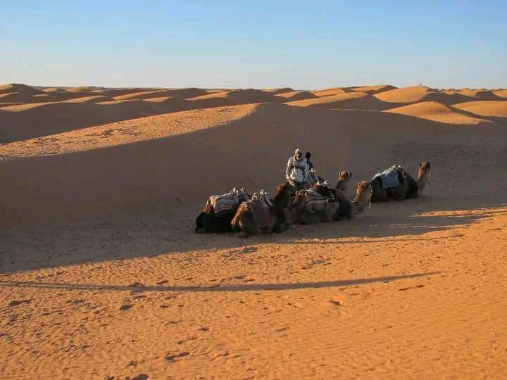 Deserto - Tunísia