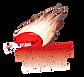 Bushfire Logo-01 copy.png