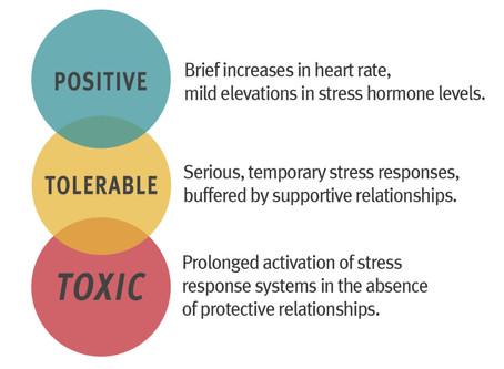 Social Emotional Wellness Resources
