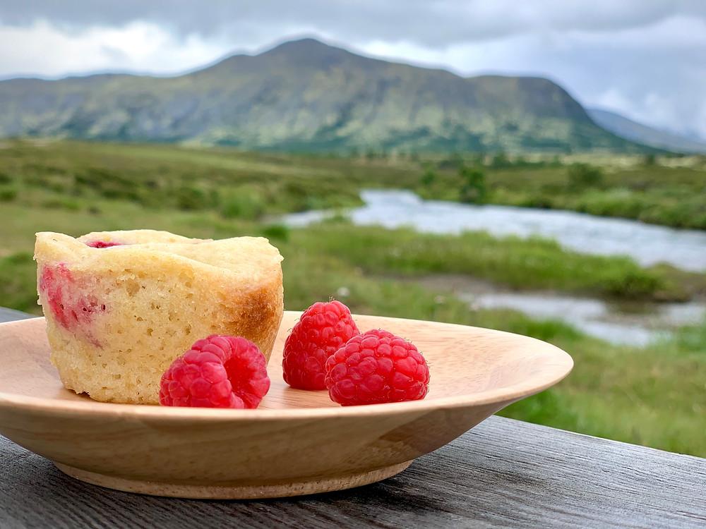 Veganske hindbærmuffins bagt i Omnia