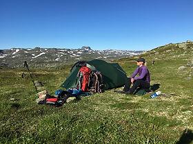 Hardanger vidda 2016.jpg