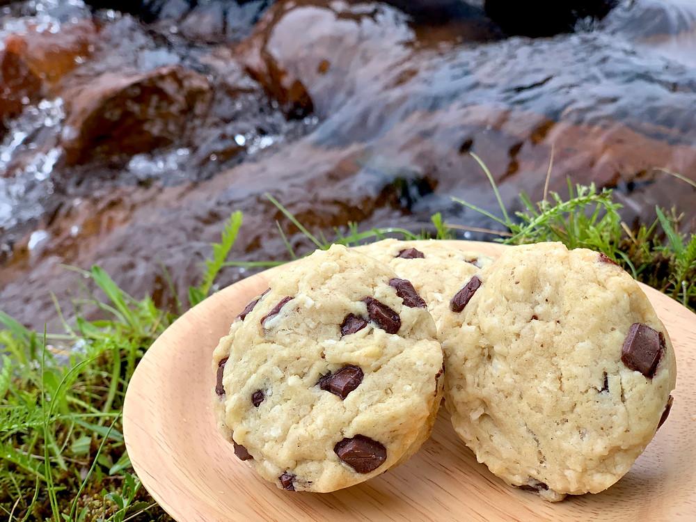 Veganske kokosmuffins med lys chokolade bagt i Omnia ovn