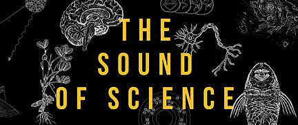 The Sound of Science.png